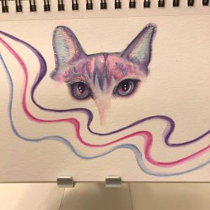 ユニコーンみたいな猫