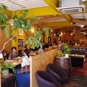 ハーミットグリーンカフェ大阪・高槻店【Hermit Green Cafe】木漏れ日あふれるリラックスカフェ