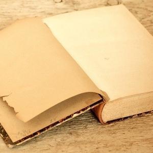 (未来予想)紙の本の良い所を取り入れた電子ファイルの目的は?