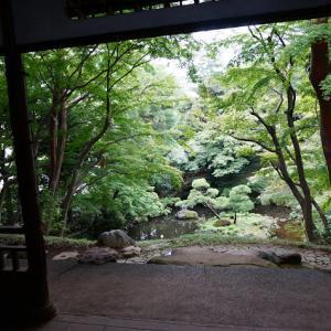 国分寺 崖を利用した庭園 殿ヶ谷戸庭園