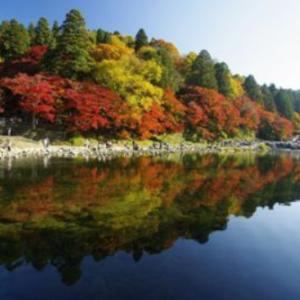 香嵐渓の紅葉の2019年の見ごろはいつ?アクセスや祭り情報!ライトアップが綺麗!