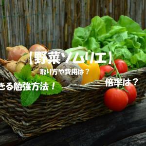 【野菜ソムリエ】資格の取り方や費用は?試験日程や勉強方法なども!