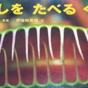 『むしをたべるくさ』渡邉弘晴写真 伊地知英信文 食虫植物の世界