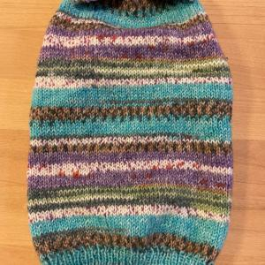 OPAL毛糸で編んだ襟付きわんこ服