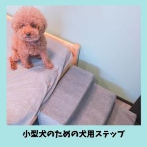 小型犬の足腰への負担を軽減・シニア犬にもおすすめの犬用階段|ゆったり幅広3段ペットステップレビュー