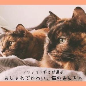 【猫用おもちゃ】インテリア好きが選ぶおしゃれでかわいいおすすめ猫遊具3選