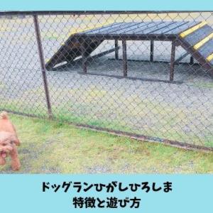 【ドッグランひがしひろしま】特徴と愛犬との遊び方レポート