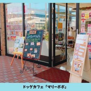 ドッグカフェ「マリーポポ」広島マリーナホップ店の特徴