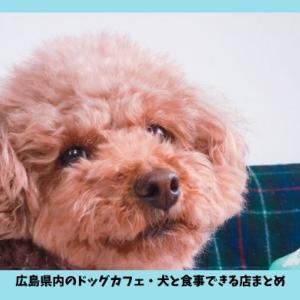 2019年版【広島のドッグカフェ・犬と食事できる人気店】おすすめ4選