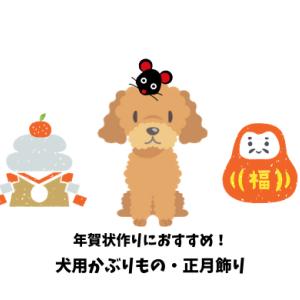 2020年版【愛犬にピッタリのかぶりもの】年賀状用コスプレアイテムのおすすめ12選