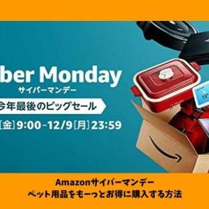 Furbo(ファーボ)ドッグカメラが安い!Amazonサイバーマンデーセールのおすすめペット用品