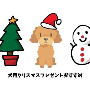 犬用のクリスマスプレゼントおすすめ15選