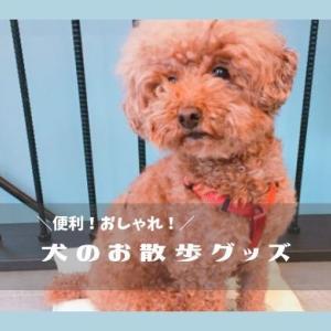 【小型犬のお散歩グッズ】便利でおしゃれなおすすめ12選