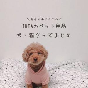 【IKEAのペット用品】便利で使えるおすすめの犬猫グッズまとめ