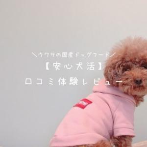 愛犬に【安心犬活】ドッグフードを試した評価・口コミ体験レビューまとめ