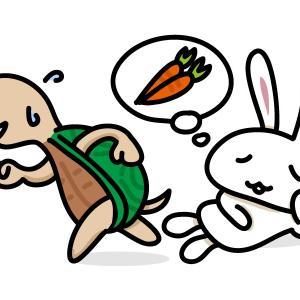 童話「ウサギとカメ」の教訓は日本人に間違った価値観を植え付ける?