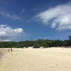 億稼ぐ起業家に会いに平日に沖縄へ!でもビビッて撃沈した話…