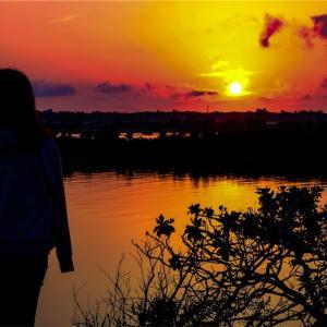遠足の前の日の夜