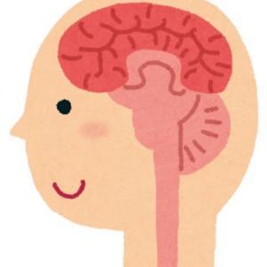 脳ドックで。