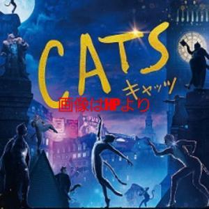 『CATS』ミュージカル映画を見てきまして