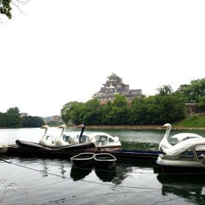 岡山家族旅行1日目~後楽園・岡山城~長男夜に合流~GO TO トラベルキャンペーン?