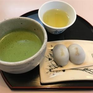 【おでかけ】まったり散策~熱田神宮とお寿司と猫~