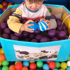 子育て支援センター☆子供の遊び場☆利点・欠点