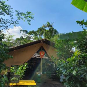 アイスレッドミントティーの女「Tiong Bahru Bakery Safari」