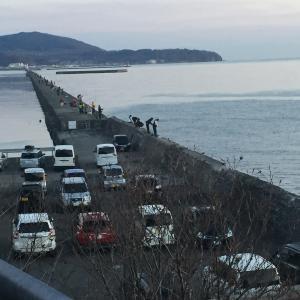 小樽港  南防波堤サクラマス狙い!!    逃したサカナは……(以下略)