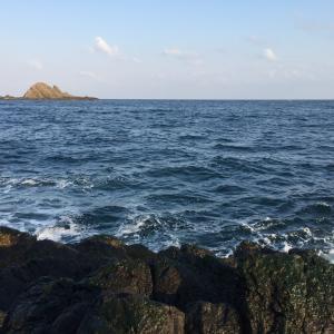 高島岬で投げ釣り!……が予想外の結果に