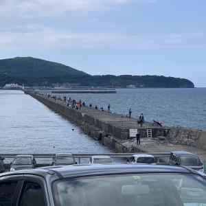 小樽港 マイカ 釣り! 激戦区の様子は……