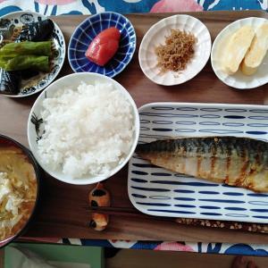 今月のおやつやさん♪と、久々の和食朝ごはん♪