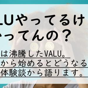 【体験談】VALUって正直儲かるの?2019年始めてみた!【メリットはあるが。。】
