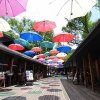梅雨も楽しくなる!インスタ映えスポット「軽井沢アンブレラスカイ2019」