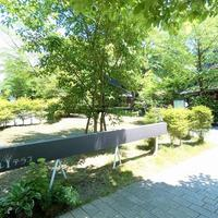 軽井沢アンブレラスカイ2021 雨の日はもちろん、晴れの日も楽しめます