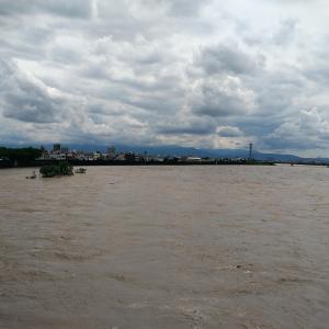 今の河の現状 7月8日