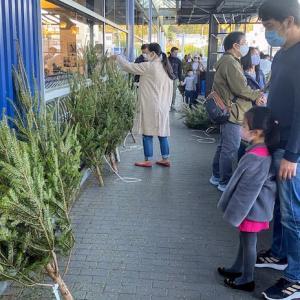 """【IKEA】""""巣篭もり""""でもう品切れも?クリスマスツリーは早い者勝ちだ!急げ!"""
