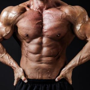 マッチョな筋肉をつけたい人にオススメのホエイプロテイン3選