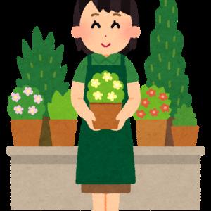 植物を育てるのも、子育ても同じ