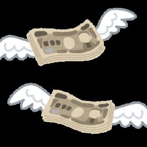 お金が飛んでいく🛫