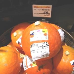赤皮かぼちゃ & 台風19号編 。.:*・° ♫