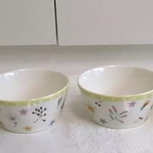ポーセラーツ~小鉢&ご飯茶碗・フードコート~ポッポ&クーポン券編 。.:*・° ♫