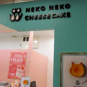 ねこ形チーズケーキ専門店&長崎カステラ&木槿の花編 。.:*・° ♫