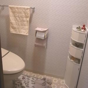 トイレのリフォーム完成編 。.:*・° ♫