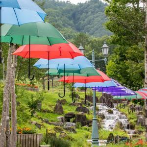 岐阜県奥飛騨で夏休みの体験を一度に。