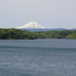 新緑の名栗湖へ