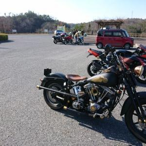 NEW  YEAR  RIDE