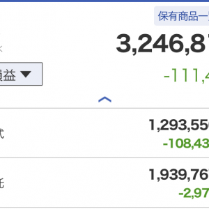 【投資】米国株、日本株ともに急落でインデックス投資が含み損に!様子見で少し投資信託を買い増してみました。