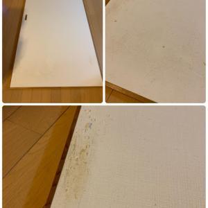 ペットが引っかいた壁紙を張り替え【モノグサ主婦のDIY】