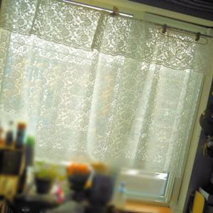 北海道昨日は5人?!「と夏に最適♪マスク用白色レース地は~カフェカーテンになるか?(笑い)